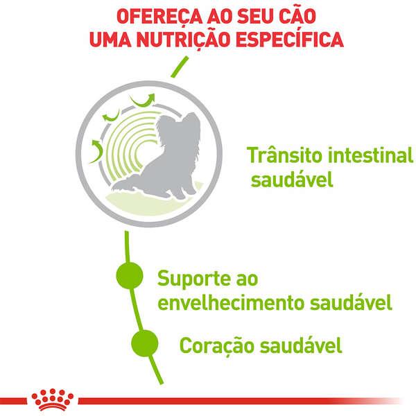 RAÇÃO ROYAL CANIN CÃO ADULTO X-SMALL 12+ 1KG