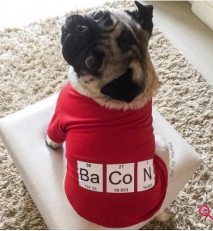 YO DOG T-SHIRT BACON G