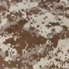 DIGITAL DESERT