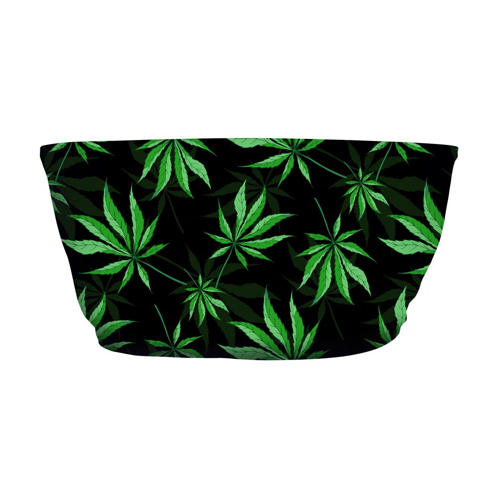 Top Faixa Cannabis Plant
