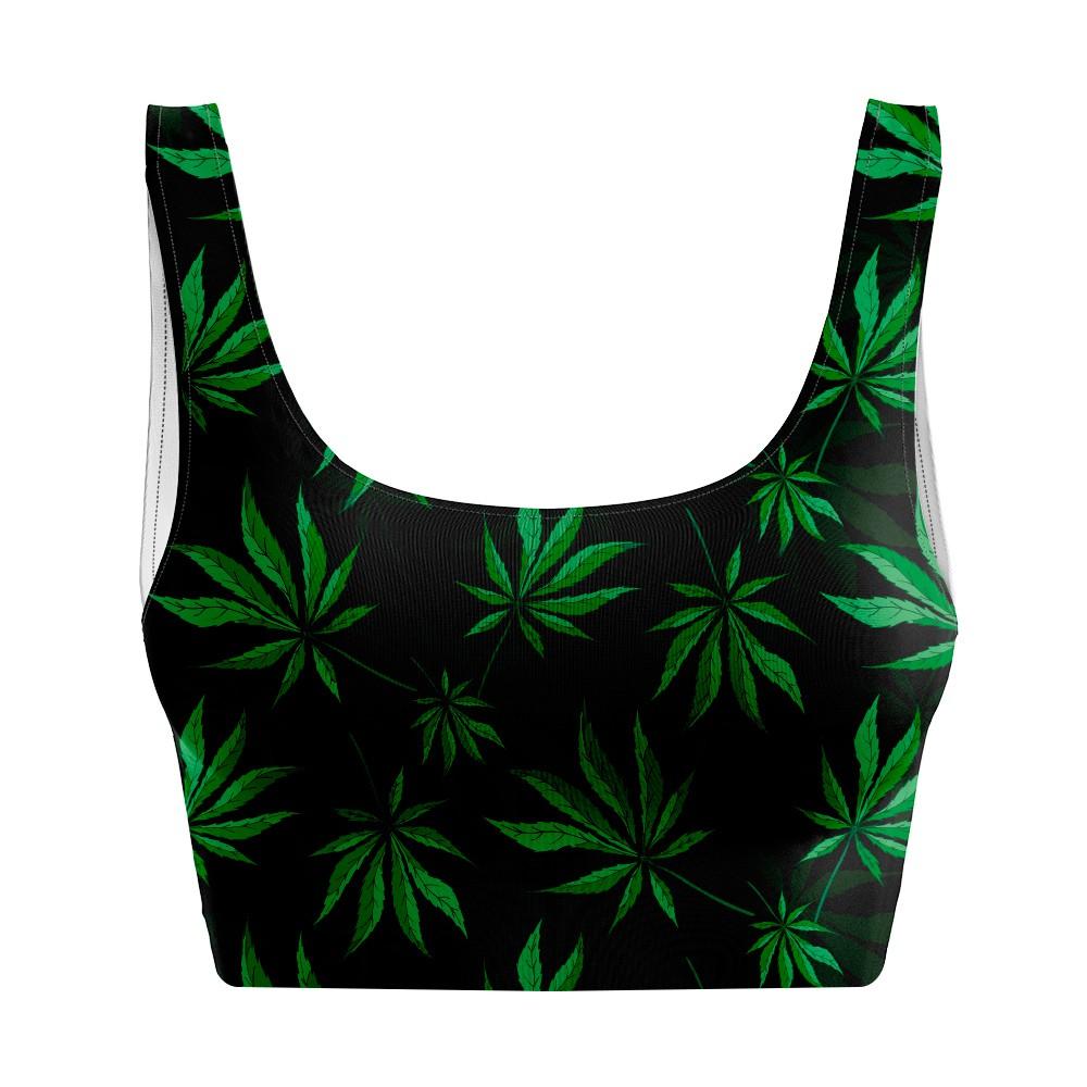 Top Regata Cannabis Plant