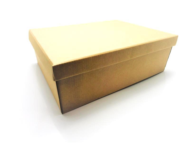 100 caixas adulto - 28 X 22 cm