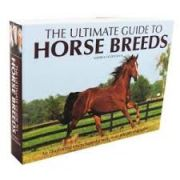 Ultimate Guide to Horse Breeds