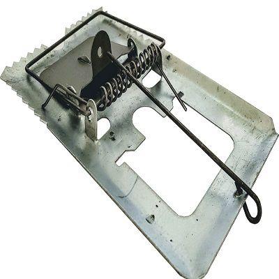 Ratoeira Pequena 6x10cm mata rato Reforçado Mortal