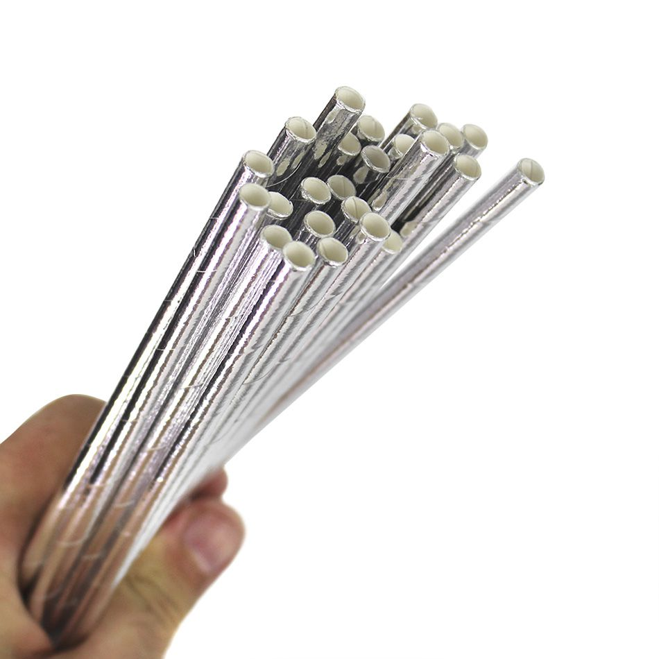 Canudo de Papel Ecológico Prata  pct com 25 un - 13858