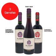 Kit 3 Vinhos Aliwen Reserva Cabernet Sauvignon / Pinot Noir/  Cabernet Sauvignon - Carménère