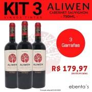 Kit 3 Vinhos Tintos Aliwen Reserva Cabernet Sauvignon