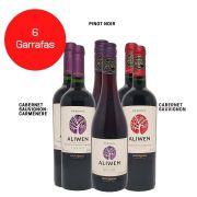 Kit 6 Vinhos Aliwen Reserva Cabernet Sauvignon / Pinot Noir/  Cabernet Sauvignon - Carménère