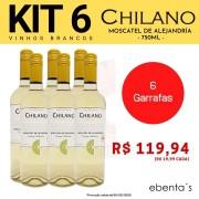 Kit 6 Vinhos Brancos Chilano Moscatel de Alejandría Vintage Collection