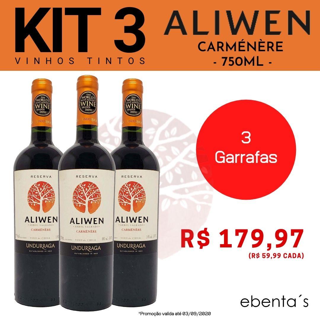 Kit 3 Vinhos Tintos Aliwen Reserva Carménère