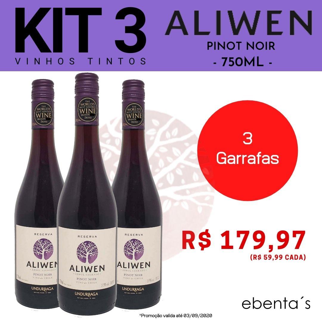 Kit 3 Vinhos Tintos Aliwen Reserva Pinot Noir