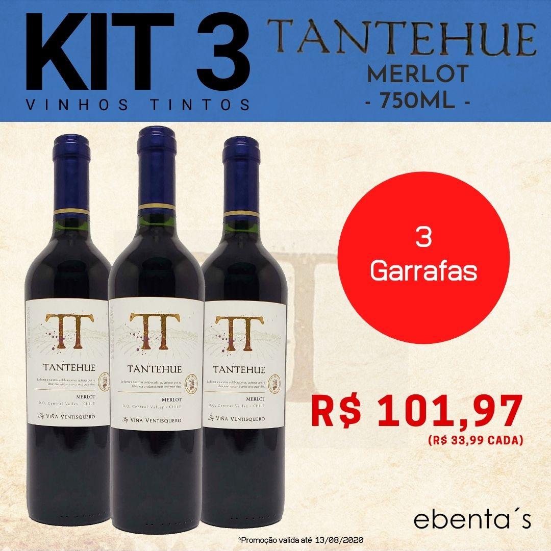 Kit 3 Vinhos Tintos Tantehue Merlot