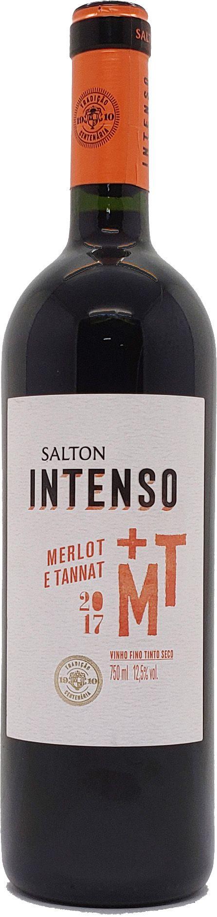 Vinho Tinto Salton Intenso Merlot e Tannat - 750ml -