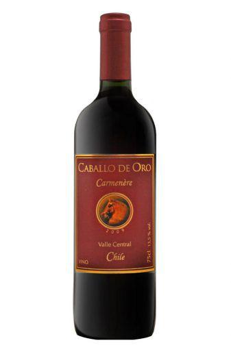 Vinho Tinto Caballo de Oro Carménère - 750ml -