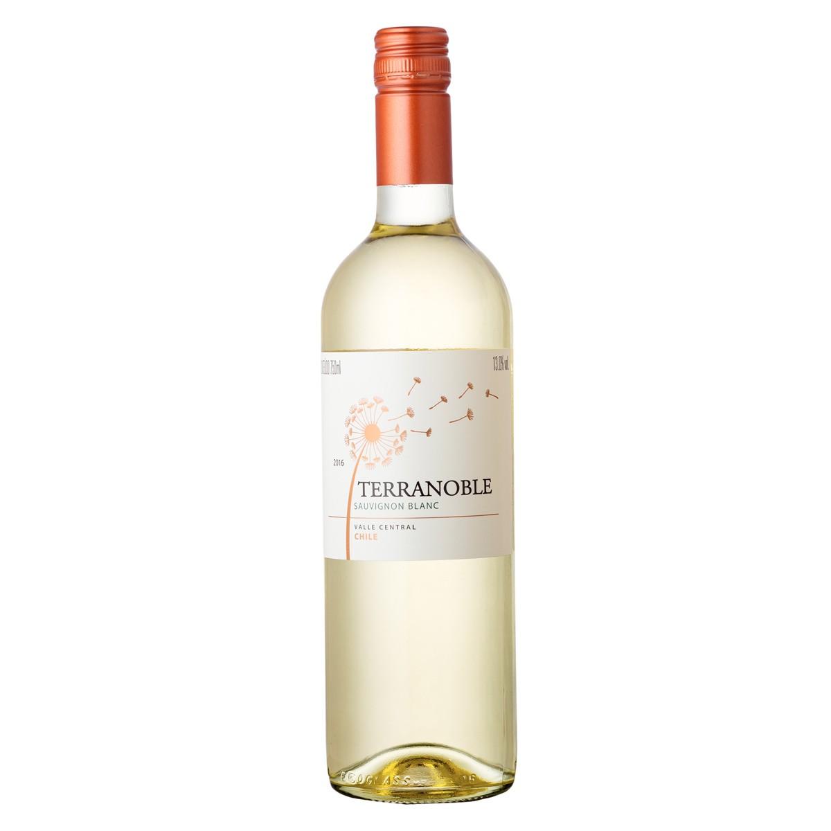 Terranoble Sauvignon Blanc