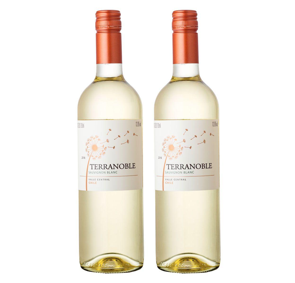 Kit com 2 Garrafas Terranoble Sauvignon Blanc