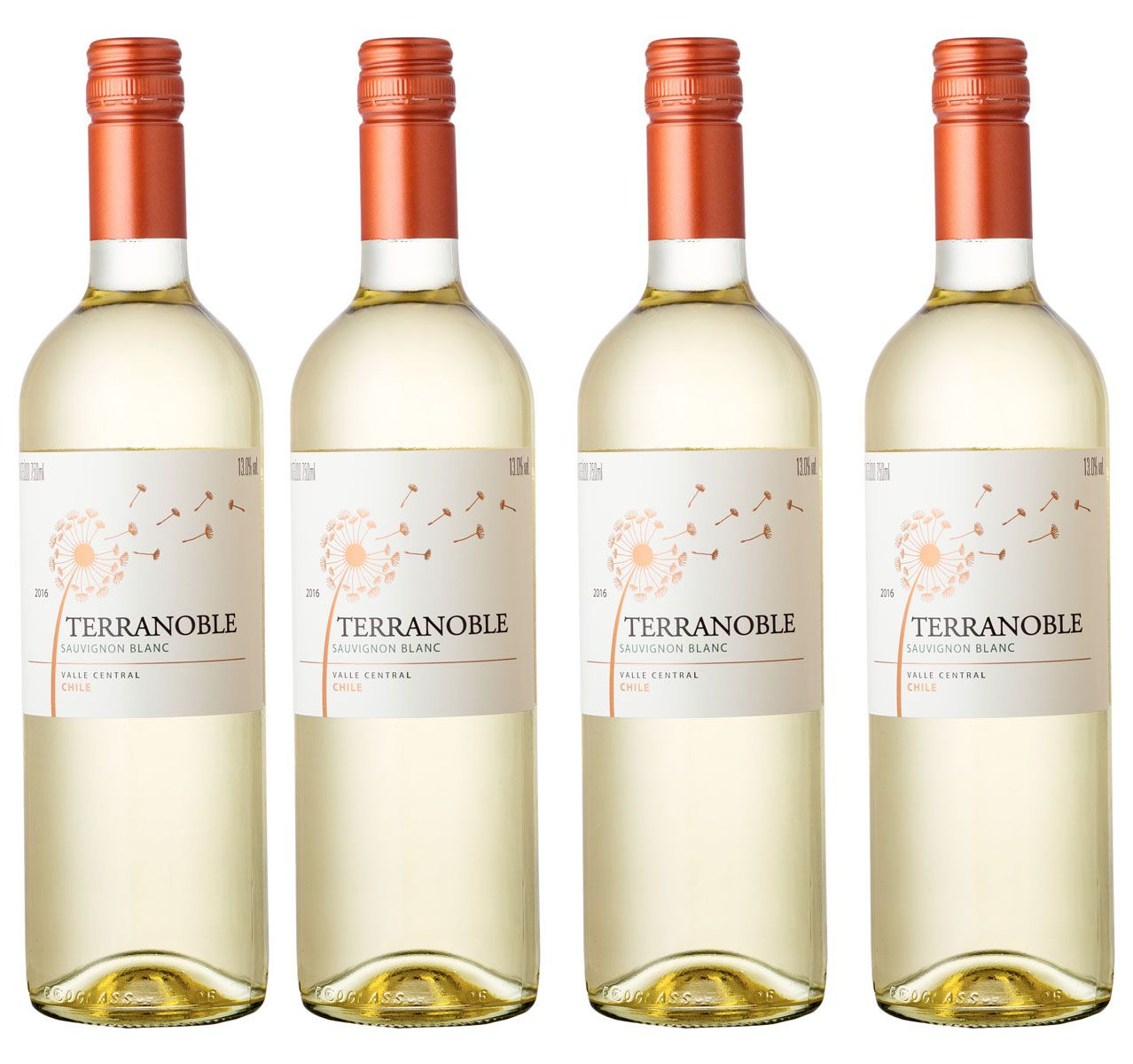 Kit com 4 Garrafas Terranoble Sauvignon Blanc