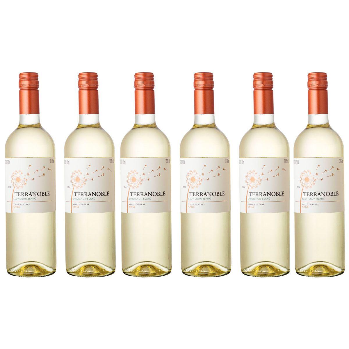 Kit com 6 Garrafas Terranoble Sauvignon Blanc