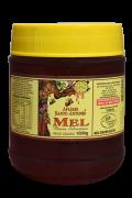 Mel de Flores Silvestres - Pote 1kg