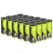 Bola de Tênis Dunlop Stage 1 Verde Caixa Com 24 Tubos