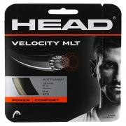 Corda Head Velocity Set Individual