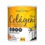 Colágeno Hidrolisado Sabor Laranja com Cenoura - 200g - Apisnutri