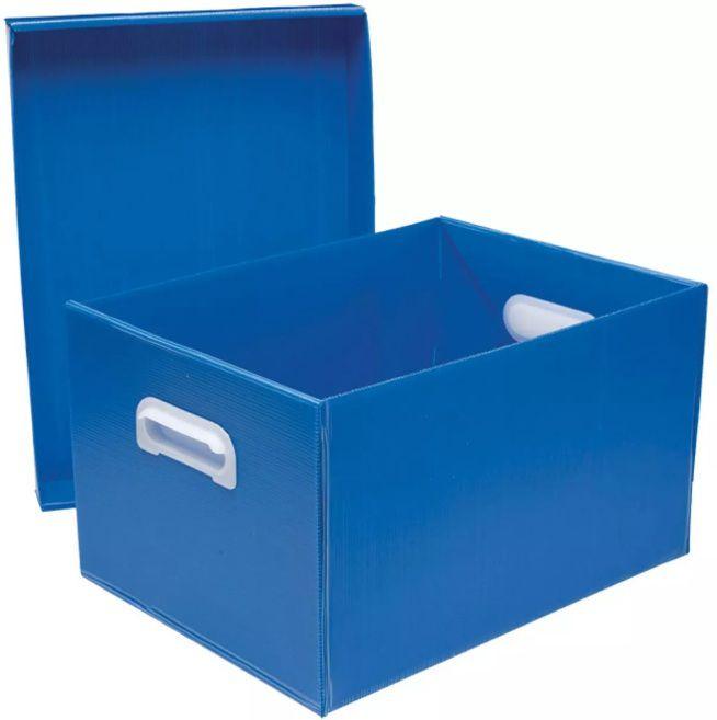 Caixa Organizadora Grande Com Tampa Azul Polibras