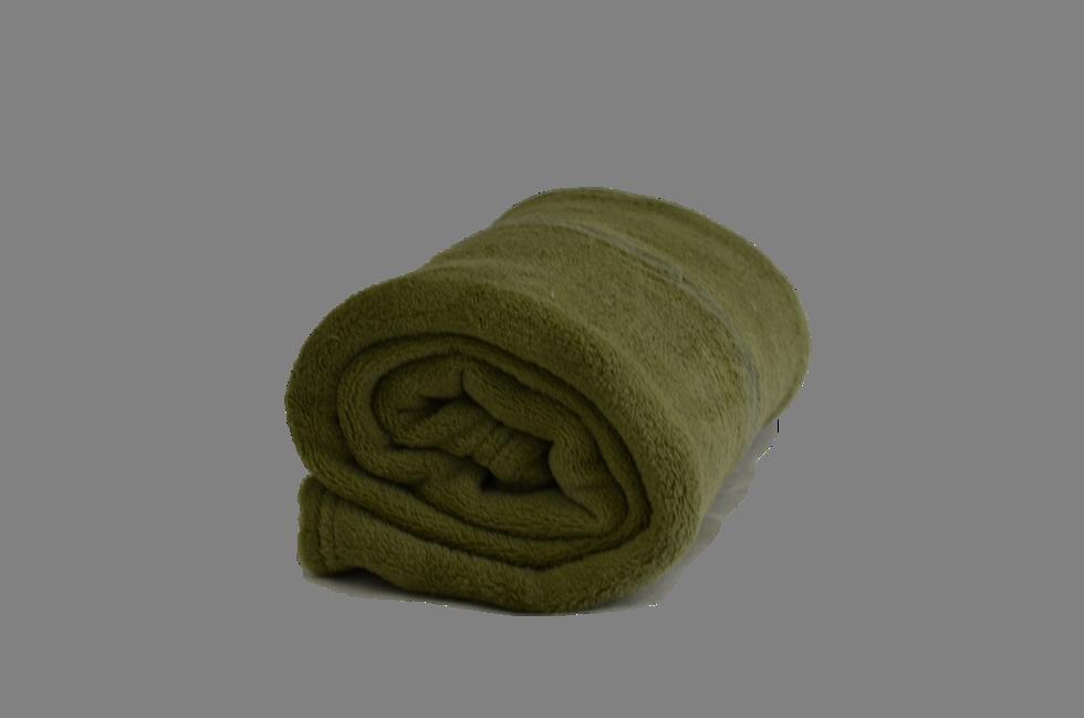 Cobertor Microfibra Infantil Liso Verde Jade