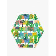 Quadro Decorativo Plantinhas - Hexagonal Color