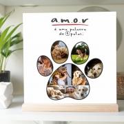 Quadro Personalizado Pet com fotos - quatro patas