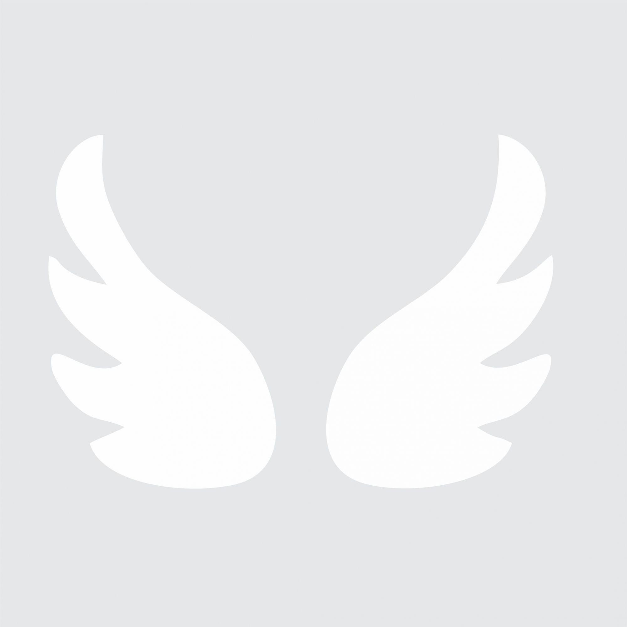 Adesivo de Parede Asas - FRETE GRATIS