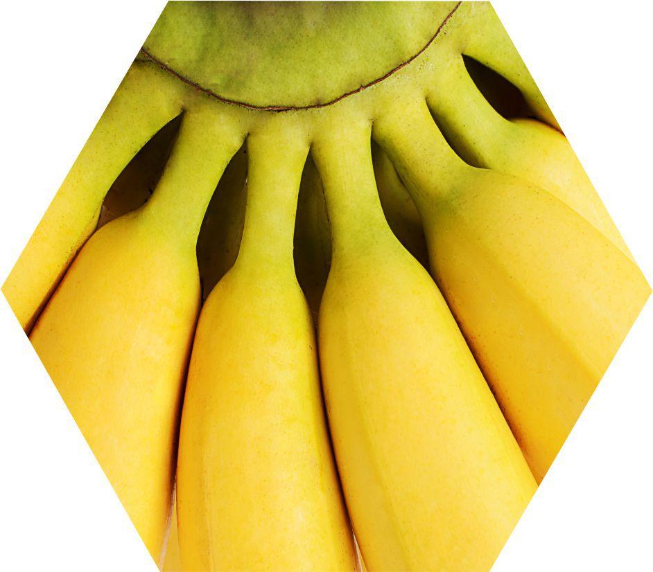 Quadro Hexagonal_Banana