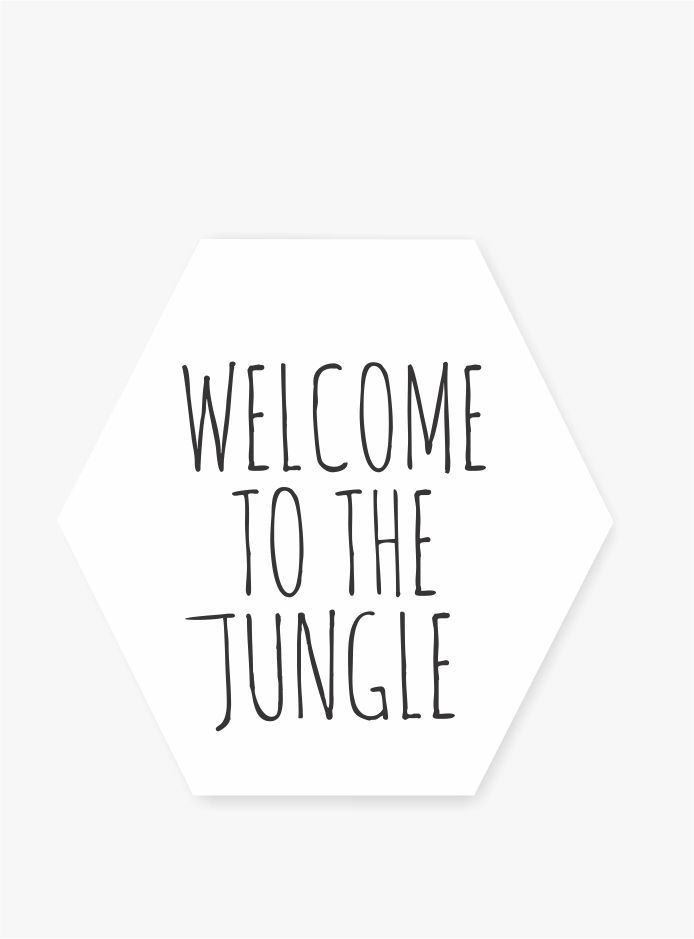 Quadro Hexagonal Escandinavo -  Welcome to the Jungle