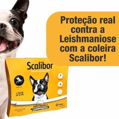 Scalibor 48 cm - Coleira MSD Antiparasitária: Mosquito Leishmaniose, Pulgas e Carrapatos.