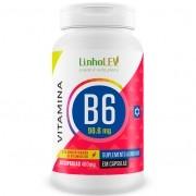 Vitamina B6 Concentrada Piridoxina 60 cápsulas