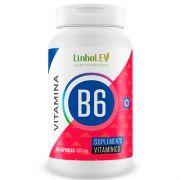 Vitamina B6 Piridoxina 60 cápsulas