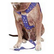 Coleira Peitoral Cachorro e Adaptador Para Cinto de Segurança Veicular Tamanho G - Cor Azul