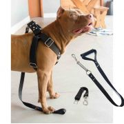 Coleira Peitoral Guia Cinto Segurança Cachorro Doberman Pitbull Anti Puxao - G Preto