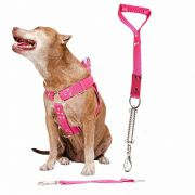 Coleira Peitoral Guia Cinto Segurança Cachorro Doberman Pitbull Anti Puxao - M Rosa
