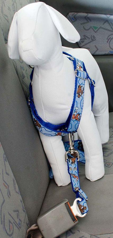 Coleira Peitoral Cachorro E Adaptador Cinto Segurança Tamanho P - Cor Azul