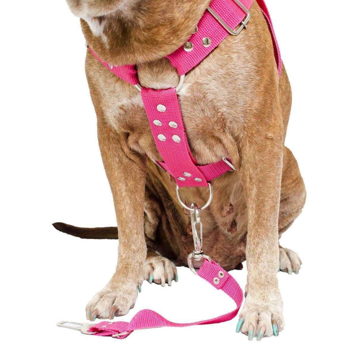 Coleira Peitoral Cachorro e Adaptador Para Cinto de Segurança Veicular Tamanho G - Cor Rosa