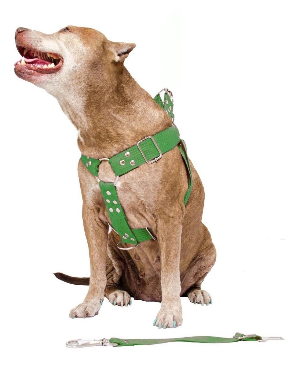 Coleira Peitoral Cachorro e Adaptador Para Cinto de Segurança Veicular Tamanho G - Cor Verde