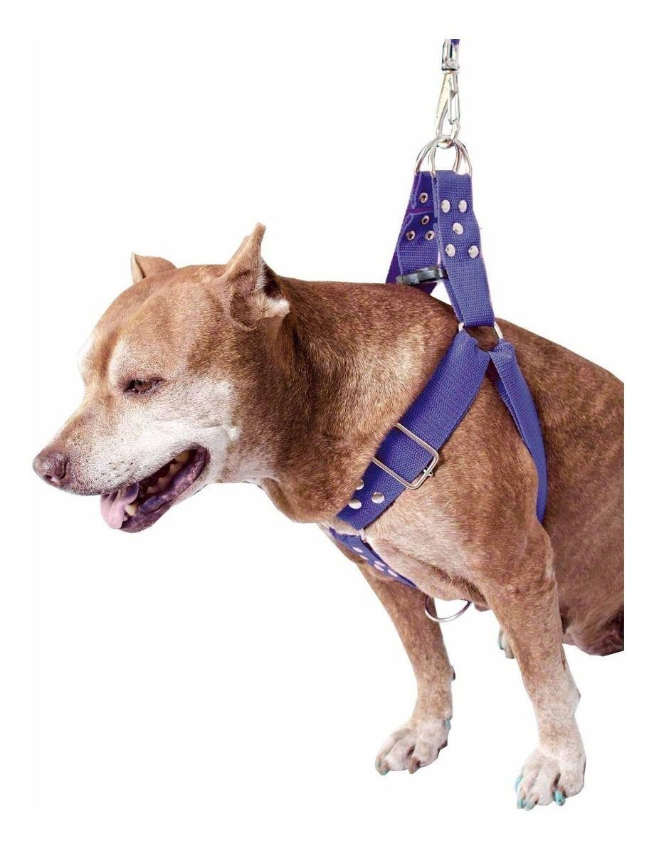 Coleira Peitoral Cachorro Guia Adaptador Cinto Segurança Tamanho G - Cor Azul