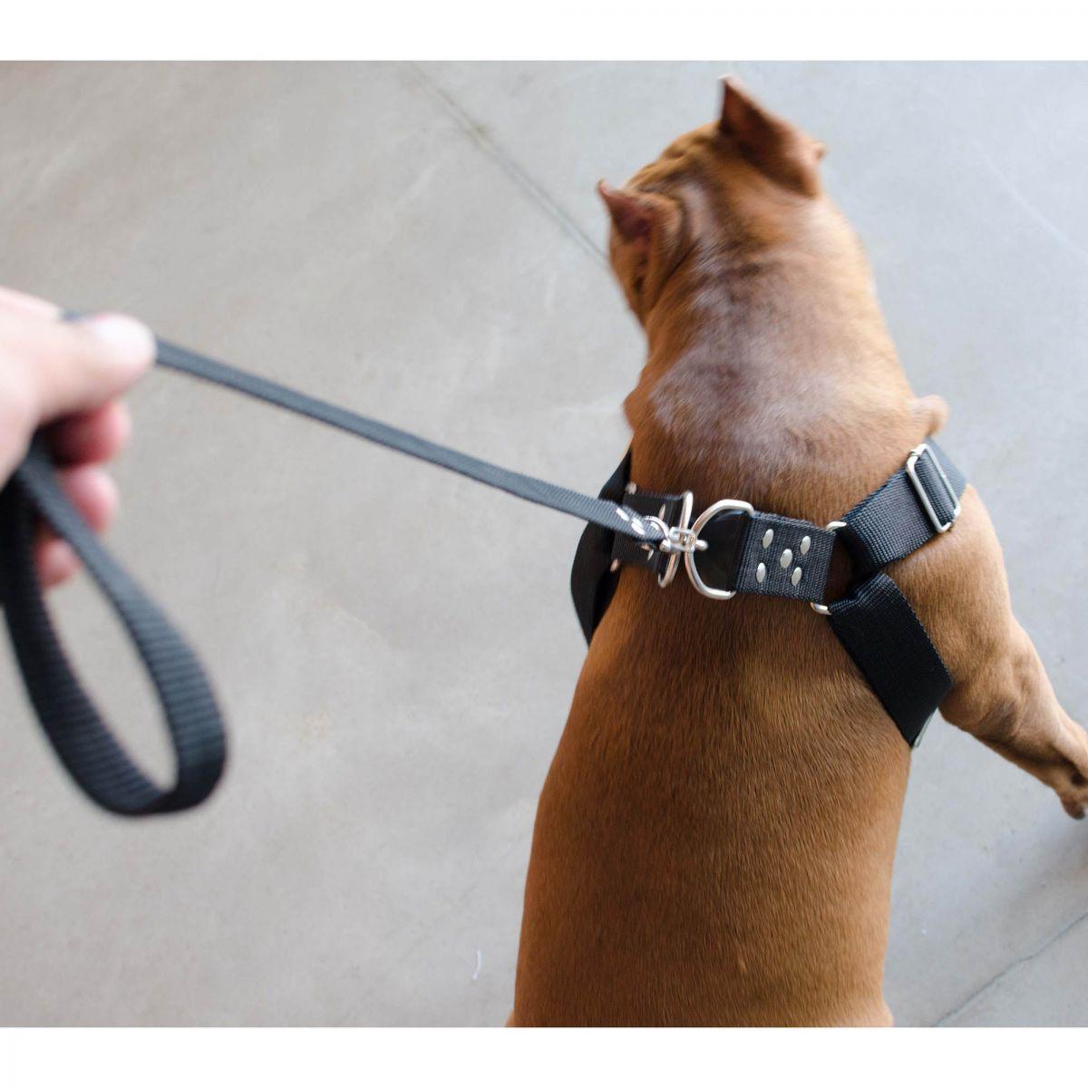 Coleira Peitoral Cachorro Porte Maior Guia Adaptador Cinto Segurança Tamanho M - Cor Preta