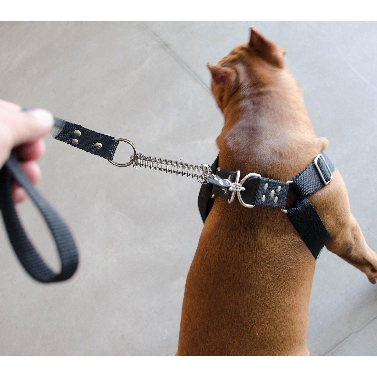 Coleira Peitoral Guia Cinto Segurança Cachorro Doberman Pitbull Anti Puxao - M Preto