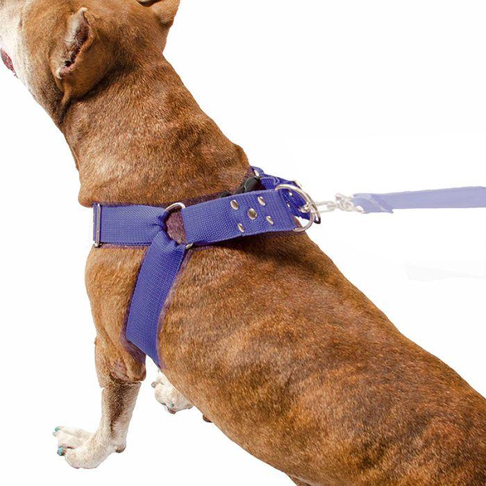 Coleira Peitoral Cachorro Porte Maior E Adaptador Para Cinto de Segurança Veicular Tamanho M - Cor Azul