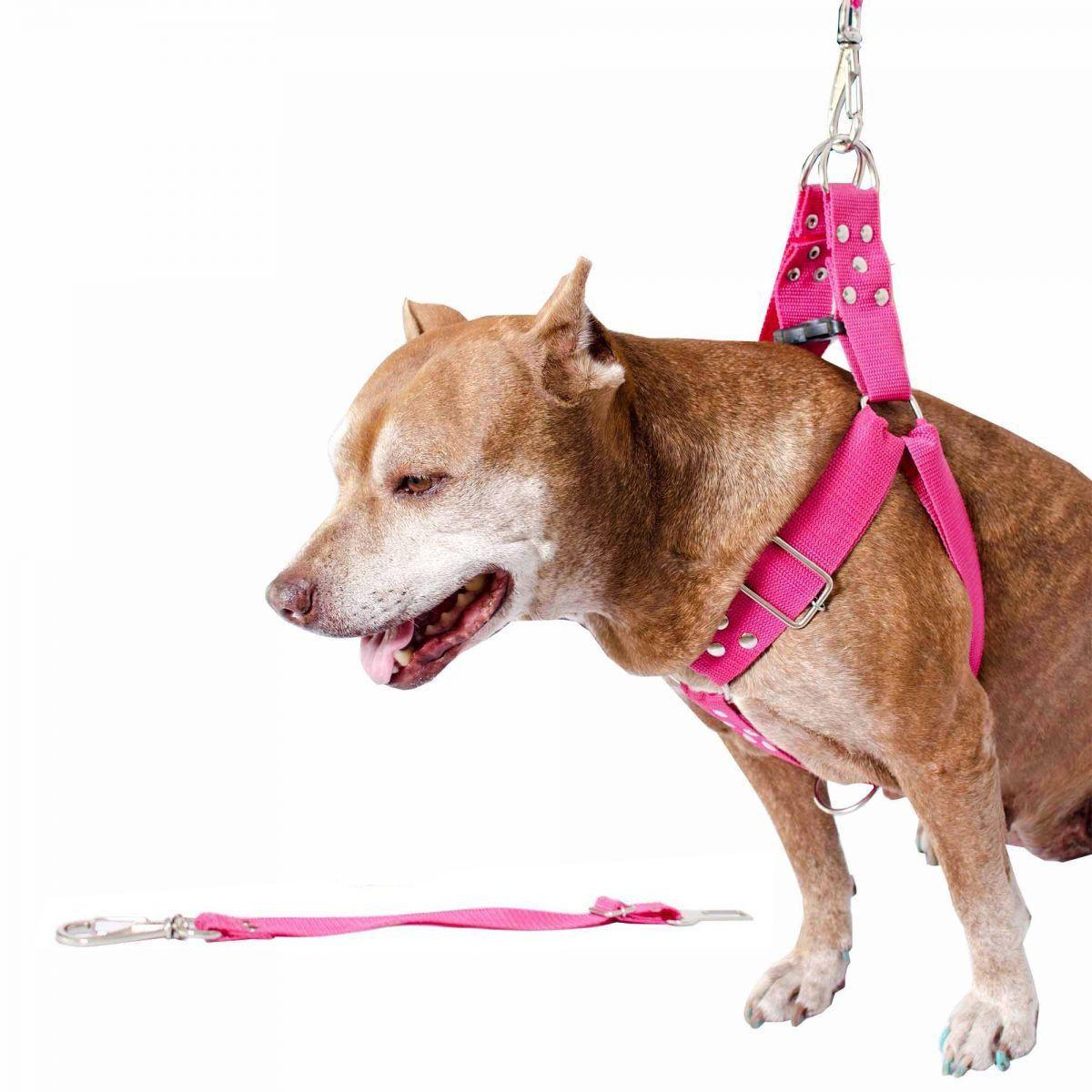 Coleira Peitoral Cachorro Porte Maior E Adaptador Para Cinto de Segurança Veicular Tamanho M - Cor Rosa