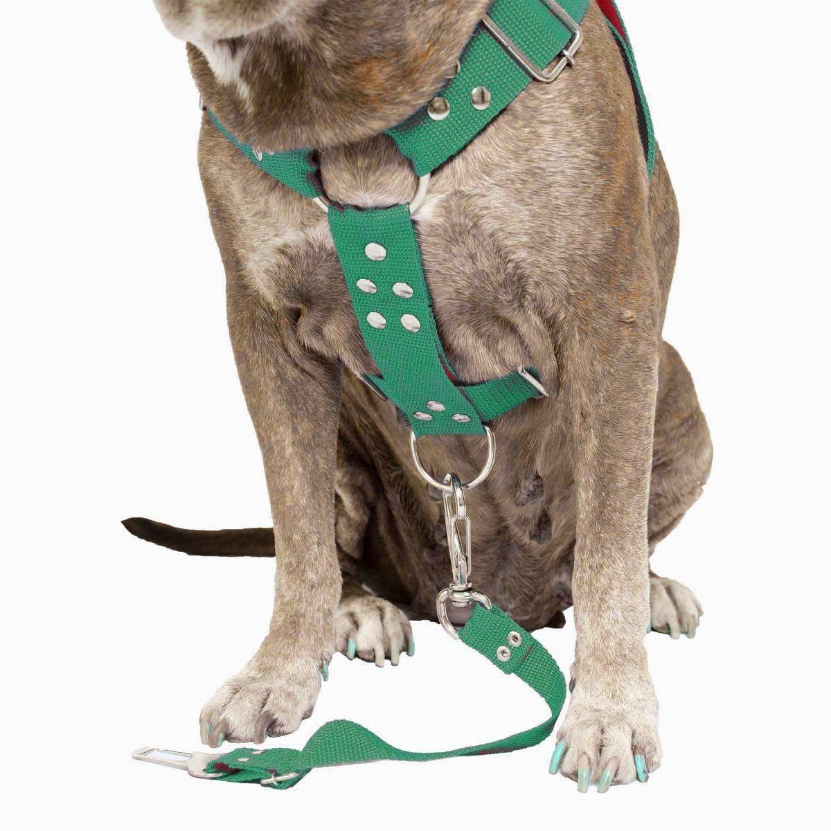 Coleira Peitoral Cachorro Porte Maior E Adaptador Para Cinto de Segurança Veicular Tamanho M - Cor Verde