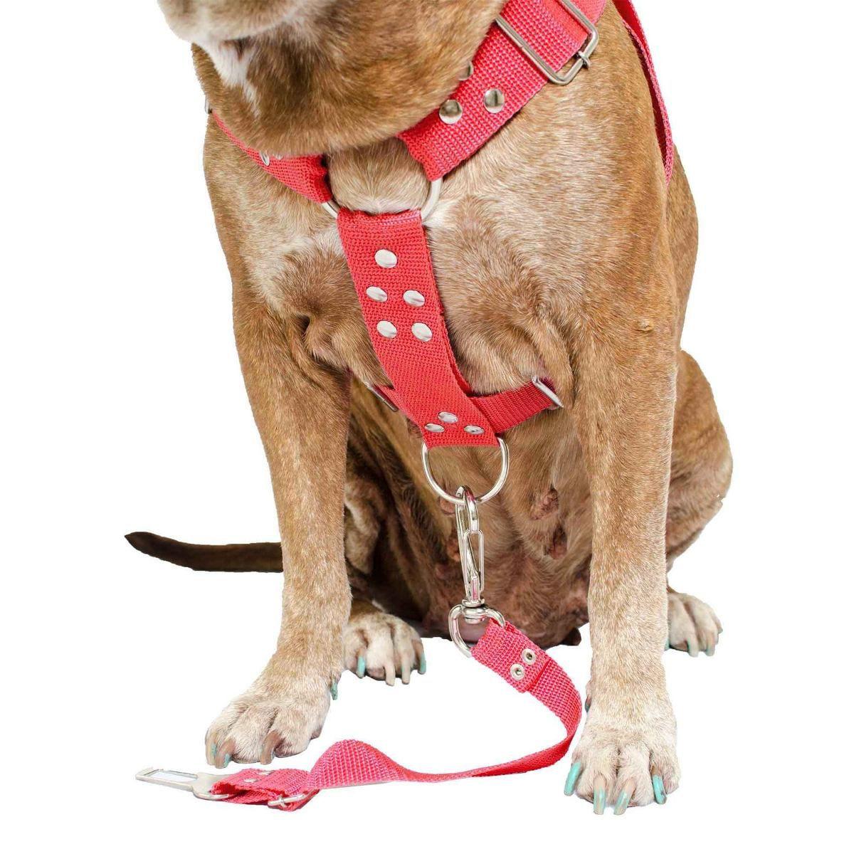 Coleira Peitoral Cachorro Porte Maior E Adaptador Para Cinto de Segurança Veicular Tamanho M - Cor Vermelha