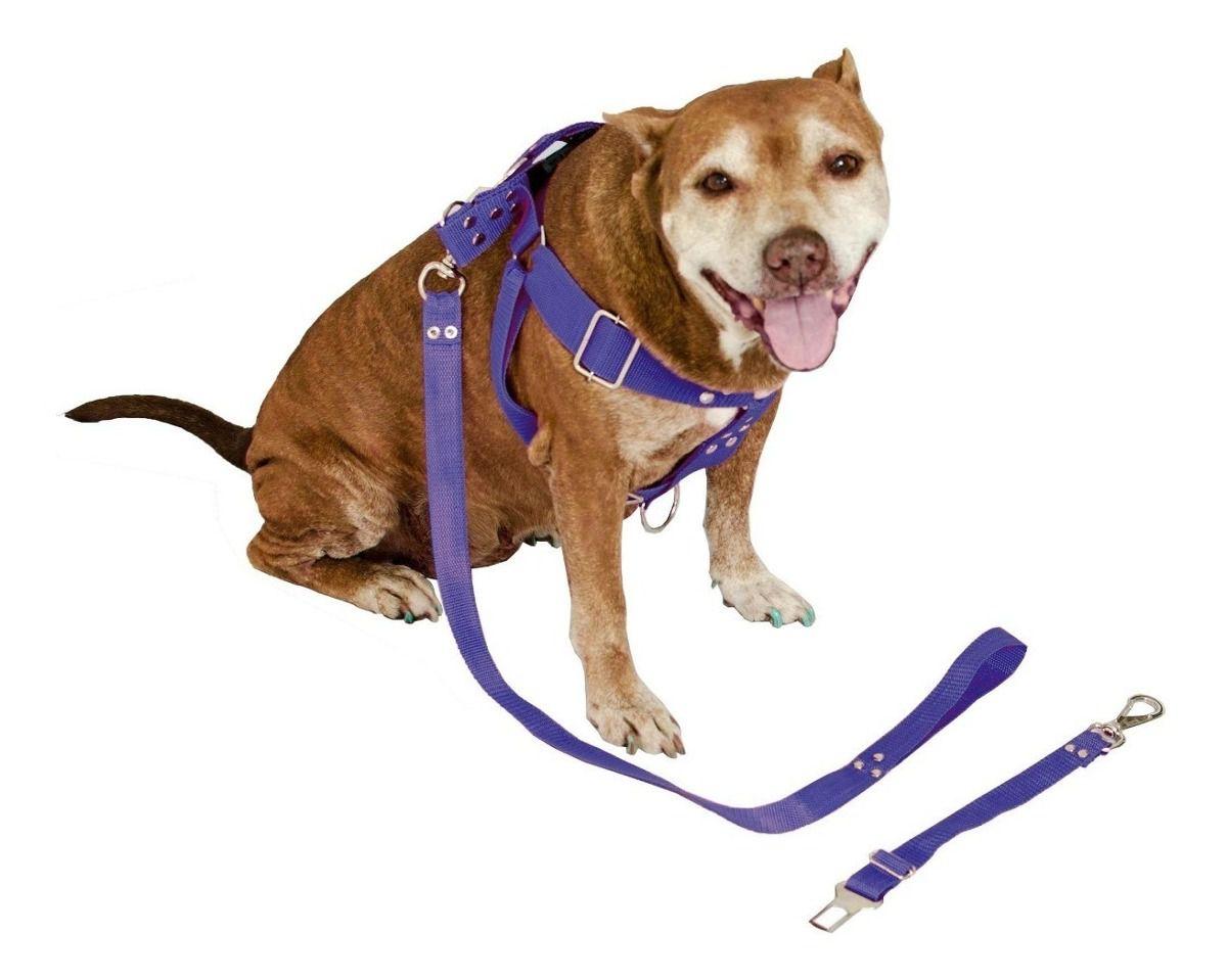 Coleira Peitoral Cachorro Porte Maior Guia Adaptador Cinto Segurança Tamanho M - Cor Azul